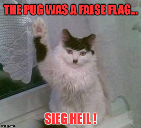 Sieg Heil ! | THE PUG WAS A FALSE FLAG... SIEG HEIL ! | image tagged in dankula,hitler,false flag,censorship | made w/ Imgflip meme maker