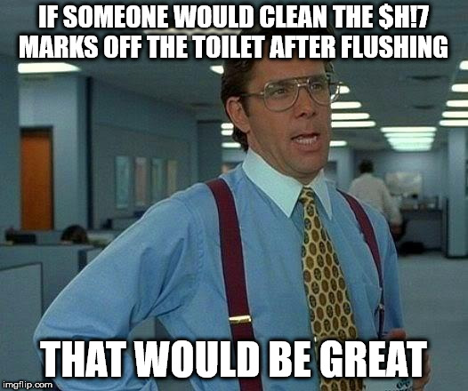 That Would Be Great Meme | IF SOMEONE WOULD CLEAN THE $H!7 MARKS OFF THE TOILET AFTER FLUSHING THAT WOULD BE GREAT | image tagged in memes,that would be great | made w/ Imgflip meme maker