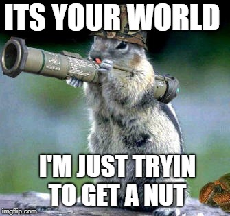 Bazooka Squirrel | ITS YOUR WORLD I'M JUST TRYIN TO GET A NUT | image tagged in memes,bazooka squirrel | made w/ Imgflip meme maker