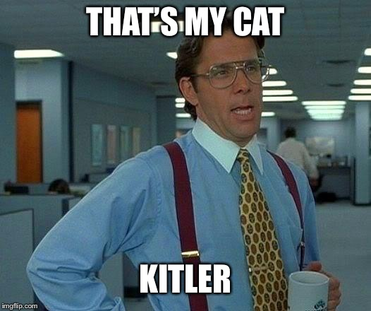 That Would Be Great Meme | THAT'S MY CAT KITLER | image tagged in memes,that would be great | made w/ Imgflip meme maker