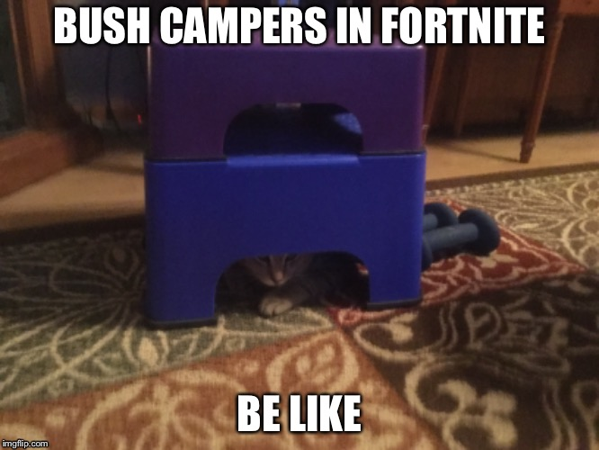 BUSH CAMPERS IN FORTNITE BE LIKE | image tagged in fortnite | made w/ Imgflip meme maker