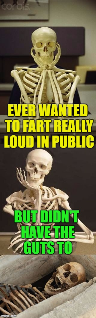 no guts, no glory | EVER WANTED TO FART REALLY LOUD IN PUBLIC BUT DIDN'T HAVE THE GUTS TO | image tagged in bad pun skeleton,farts,funny | made w/ Imgflip meme maker