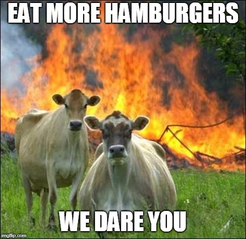 Evil Cows | EAT MORE HAMBURGERS WE DARE YOU | image tagged in memes,evil cows | made w/ Imgflip meme maker