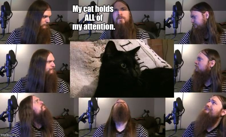 He also knows what you do in the dark... | My cat holds ALL of my attention. | image tagged in smooth mcgroove,memes,cats | made w/ Imgflip meme maker