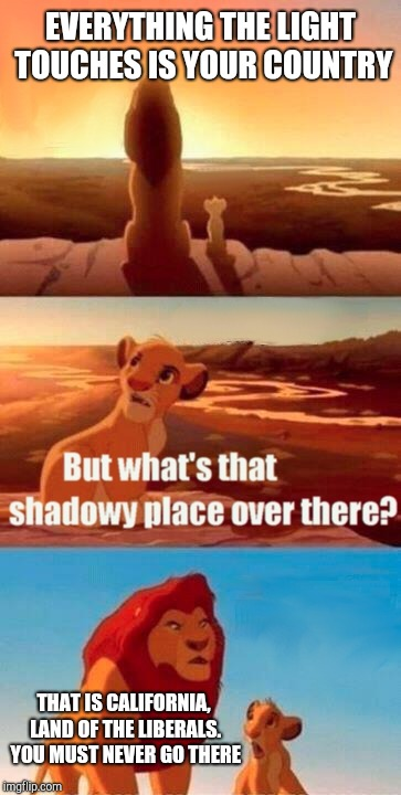 Simba Shadowy Place Meme | EVERYTHING THE LIGHT TOUCHES IS YOUR COUNTRY THAT IS CALIFORNIA, LAND OF THE LIBERALS. YOU MUST NEVER GO THERE | image tagged in memes,liberals,simba shadowy place,beware | made w/ Imgflip meme maker