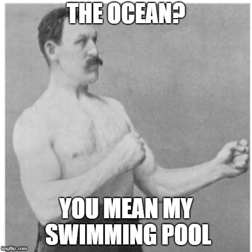 Overly Manly Man Meme | THE OCEAN? YOU MEAN MY SWIMMING POOL | image tagged in memes,overly manly man | made w/ Imgflip meme maker