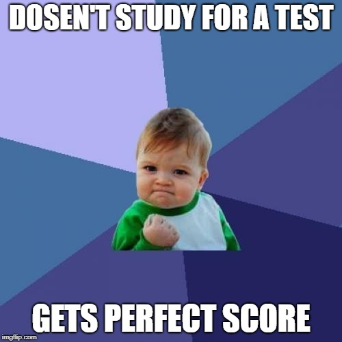 Success Kid Meme | DOSEN'T STUDY FOR A TEST GETS PERFECT SCORE | image tagged in memes,success kid | made w/ Imgflip meme maker