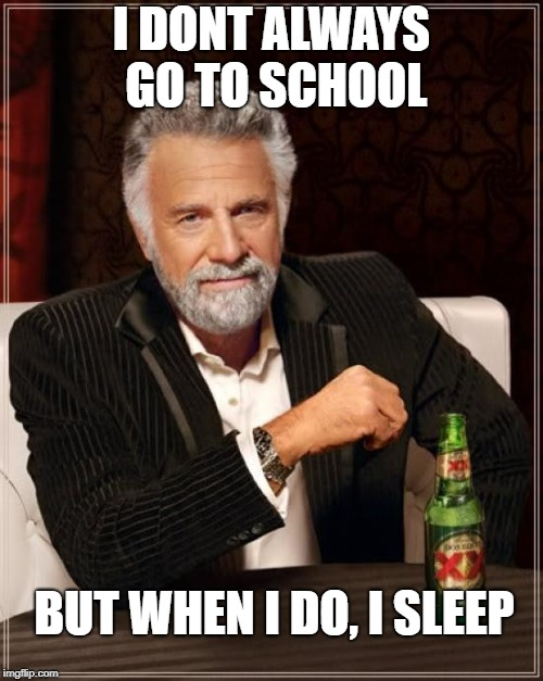 The Most Interesting Man In The World Meme | I DONT ALWAYS GO TO SCHOOL BUT WHEN I DO, I SLEEP | image tagged in memes,the most interesting man in the world | made w/ Imgflip meme maker