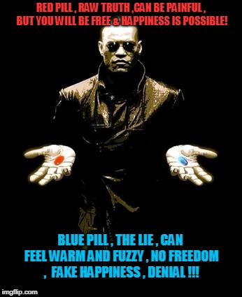 RED PILL , RAW TRUTH ,CAN BE PAINFUL , BUT YOU WILL BE FREE & HAPPINESS IS POSSIBLE! BLUE PILL , THE LIE , CAN FEEL WARM AND FUZZY , NO FREE | image tagged in blue pill red pill | made w/ Imgflip meme maker