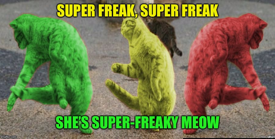Three Dancing RayCats | SUPER FREAK, SUPER FREAK SHE'S SUPER-FREAKY MEOW | image tagged in three dancing raycats,memes | made w/ Imgflip meme maker