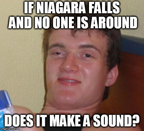 10 Guy Meme | IF NIAGARA FALLS AND NO ONE IS AROUND DOES IT MAKE A SOUND? | image tagged in memes,10 guy | made w/ Imgflip meme maker