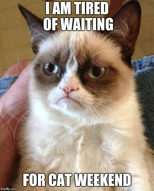 Grumpy cat. Cat weekend  May 11th to May 13th a Landon_the_memer 1forpeace and JBmemegeek event.  | I AM TIRED OF WAITING FOR CAT WEEKEND | image tagged in memes,grumpy cat,cat weekend,jbmemegeek,landon_the_memer,1forpeace | made w/ Imgflip meme maker