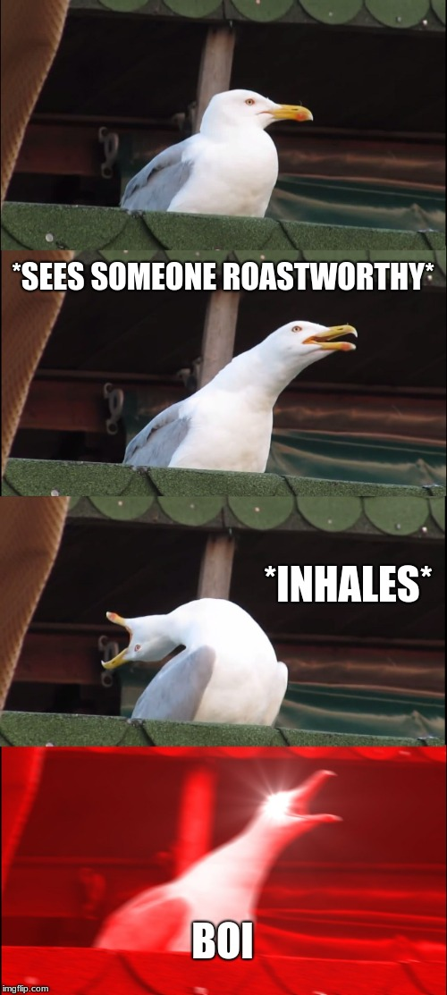 Inhaling Seagull Meme | *SEES SOMEONE ROASTWORTHY* *INHALES* BOI | image tagged in memes,inhaling seagull | made w/ Imgflip meme maker
