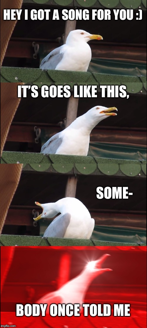 Inhaling Seagull Meme | HEY I GOT A SONG FOR YOU :) IT'S GOES LIKE THIS, SOME- BODY ONCE TOLD ME | image tagged in memes,inhaling seagull | made w/ Imgflip meme maker