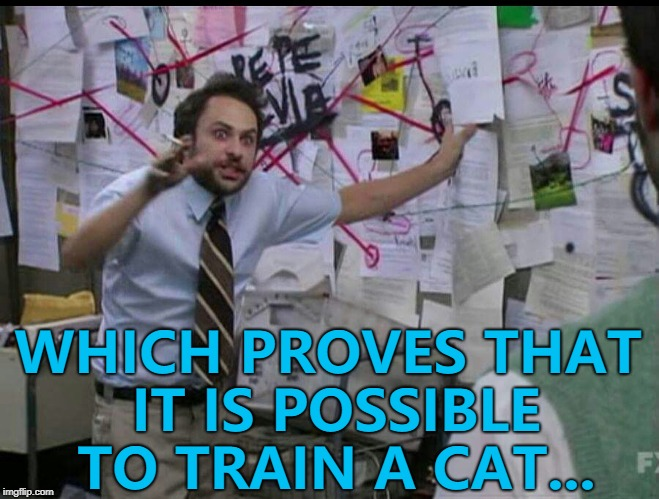 He might want to check his working... :) | WHICH PROVES THAT IT IS POSSIBLE TO TRAIN A CAT... | image tagged in trying to explain,memes,cats,animals,pets | made w/ Imgflip meme maker
