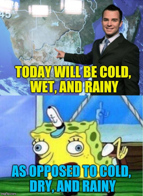 TODAY WILL BE COLD, WET, AND RAINY AS OPPOSED TO COLD, DRY, AND RAINY | image tagged in mocking spongebob,weather,sarcasm,cold,dry,wet | made w/ Imgflip meme maker