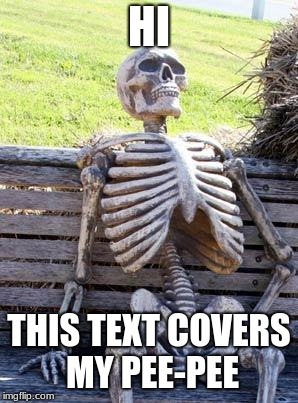 Waiting Skeleton Meme | HI THIS TEXT COVERS MY PEE-PEE | image tagged in memes,waiting skeleton | made w/ Imgflip meme maker