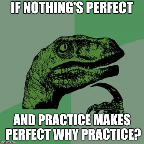 woah!! | IF NOTHING'S PERFECT AND PRACTICE MAKES PERFECT WHY PRACTICE? | image tagged in memes,philosoraptor | made w/ Imgflip meme maker