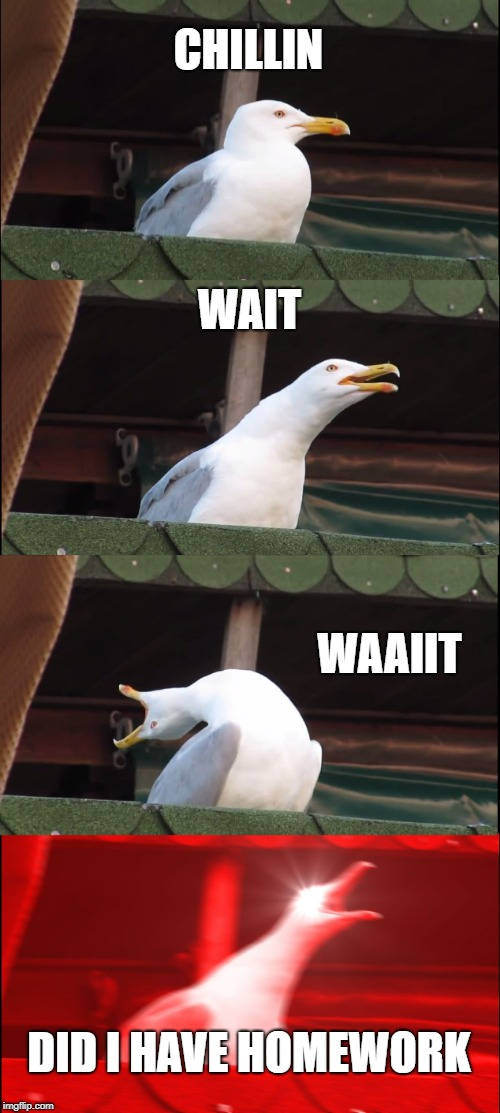 Inhaling Seagull Meme | CHILLIN WAIT WAAIIT DID I HAVE HOMEWORK | image tagged in memes,inhaling seagull | made w/ Imgflip meme maker