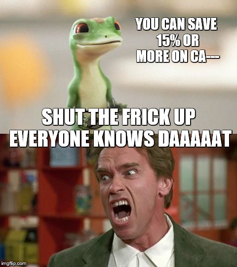 Geico | YOU CAN SAVE 15% OR MORE ON CA--- SHUT THE FRICK UP EVERYONE KNOWS DAAAAAT | image tagged in geico,shut up | made w/ Imgflip meme maker