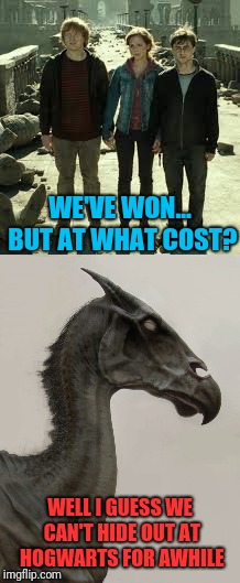 Thestral first world problems | WE'VE WON... BUT AT WHAT COST? WELL I GUESS WE CAN'T HIDE OUT AT HOGWARTS FOR AWHILE | image tagged in memes,harry potter,hogwarts,monster,dead horse | made w/ Imgflip meme maker