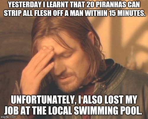 Frustrated Boromir Meme | YESTERDAY I LEARNT THAT 20 PIRANHAS CAN STRIP ALL FLESH OFF A MAN WITHIN 15 MINUTES. UNFORTUNATELY, I ALSO LOST MY JOB AT THE LOCAL SWIMMING | image tagged in memes,frustrated boromir | made w/ Imgflip meme maker