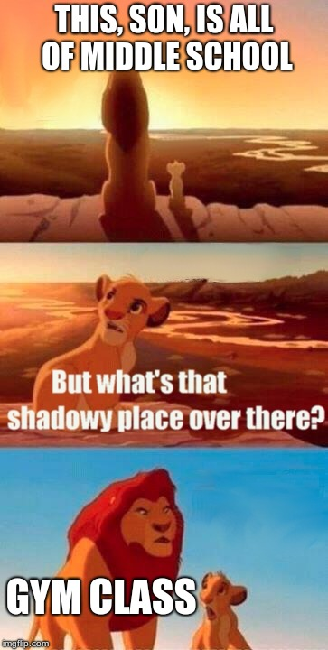 Simba Shadowy Place Meme | THIS, SON, IS ALL OF MIDDLE SCHOOL GYM CLASS | image tagged in memes,simba shadowy place | made w/ Imgflip meme maker
