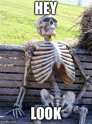 Waiting Skeleton Meme | HEY LOOK | image tagged in memes,waiting skeleton | made w/ Imgflip meme maker
