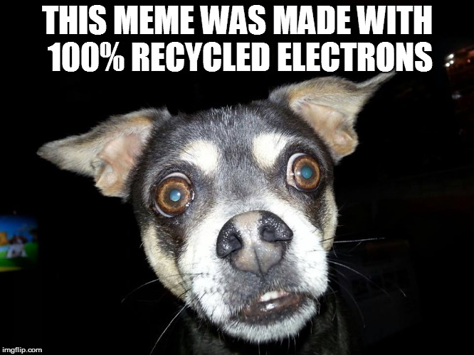 Recycle memes...and their electrons | THIS MEME WAS MADE WITH 100% RECYCLED ELECTRONS | image tagged in recycle,memes,dogs,recycling | made w/ Imgflip meme maker
