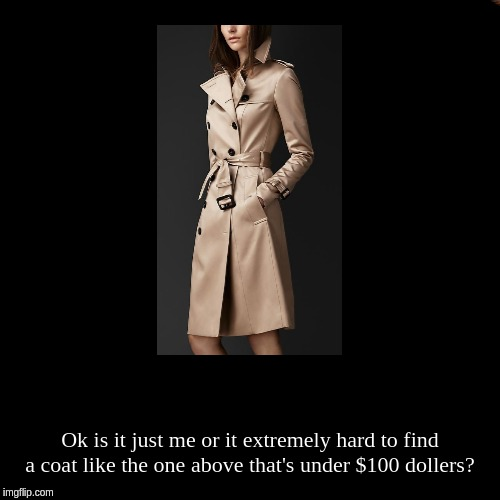 Ok is it just me or it extremely hard to find a coat like the one above that's under $100 dollers? | image tagged in funny,demotivationals | made w/ Imgflip demotivational maker