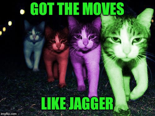 Wrong Neighborhood RayCats | GOT THE MOVES LIKE JAGGER | image tagged in wrong neighborhood raycats | made w/ Imgflip meme maker