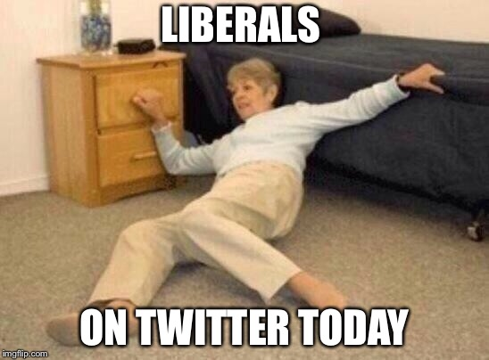 woman falling in shock | LIBERALS ON TWITTER TODAY | image tagged in woman falling in shock,kanye,trump,twitter | made w/ Imgflip meme maker