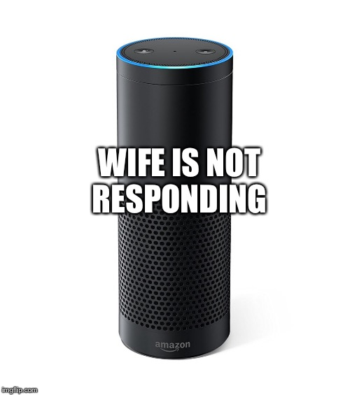 Amazon Echo | WIFE IS NOT RESPONDING | image tagged in amazon echo | made w/ Imgflip meme maker