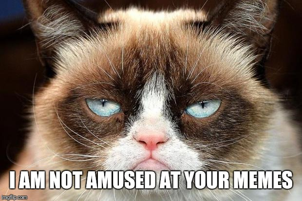 Grumpy Cat Not Amused Meme | I AM NOT AMUSED AT YOUR MEMES | image tagged in memes,grumpy cat not amused,grumpy cat | made w/ Imgflip meme maker