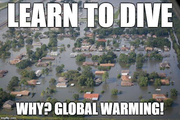 LEARN TO DIVE WHY? GLOBAL WARMING! | image tagged in houston flooded | made w/ Imgflip meme maker