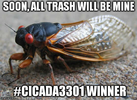 SOON, ALL TRASH WILL BE MINE #CICADA3301 WINNER | image tagged in cicada | made w/ Imgflip meme maker