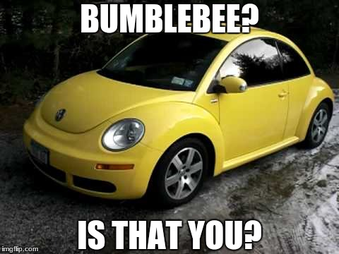 I might be young, but I've seen a few episodes of G1 | BUMBLEBEE? IS THAT YOU? | image tagged in transformers,bumblebee,volkswagen | made w/ Imgflip meme maker