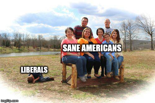 The truth | SANE AMERICANS LIBERALS | image tagged in maga,donald trump,sad weak little liberals | made w/ Imgflip meme maker