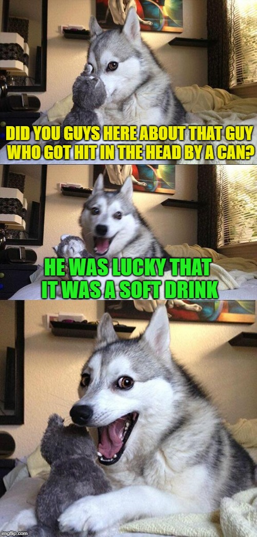Bad Pun Dog Meme | DID YOU GUYS HERE ABOUT THAT GUY WHO GOT HIT IN THE HEAD BY A CAN? HE WAS LUCKY THAT IT WAS A SOFT DRINK | image tagged in memes,bad pun dog | made w/ Imgflip meme maker