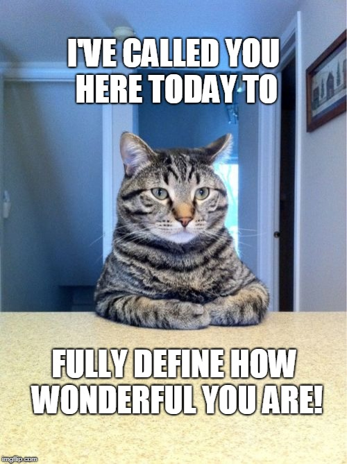 Take A Seat Cat | I'VE CALLED YOU HERE TODAY TO FULLY DEFINE HOW WONDERFUL YOU ARE! | image tagged in memes,take a seat cat | made w/ Imgflip meme maker