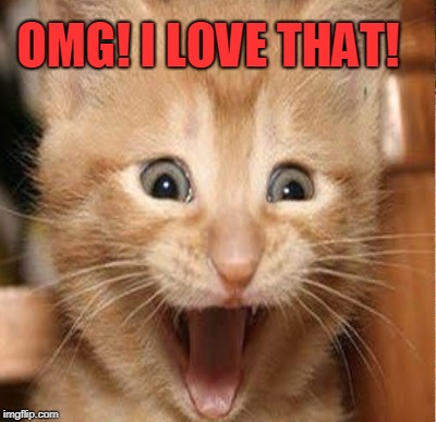 OMG! I LOVE THAT! | made w/ Imgflip meme maker