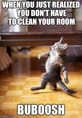 The cat stroll of success | WHEN YOU JUST REALIZED YOU DON'T HAVE TO CLEAN YOUR ROOM BUBOOSH | image tagged in memes,cool cat stroll | made w/ Imgflip meme maker
