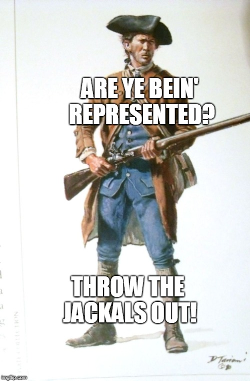 ARE YE BEIN' REPRESENTED? THROW THE JACKALS OUT! | made w/ Imgflip meme maker