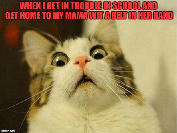 Scared Cat Meme | WHEN I GET IN TROUBLE IN SCHOOL AND GET HOME TO MY MAMA WIT A BELT IN HER HAND | image tagged in memes,scared cat | made w/ Imgflip meme maker