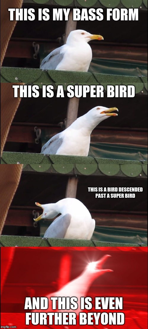 Inhaling Seagull Meme | THIS IS MY BASS FORM THIS IS A SUPER BIRD THIS IS A BIRD DESCENDED PAST A SUPER BIRD AND THIS IS EVEN FURTHER BEYOND | image tagged in memes,inhaling seagull | made w/ Imgflip meme maker