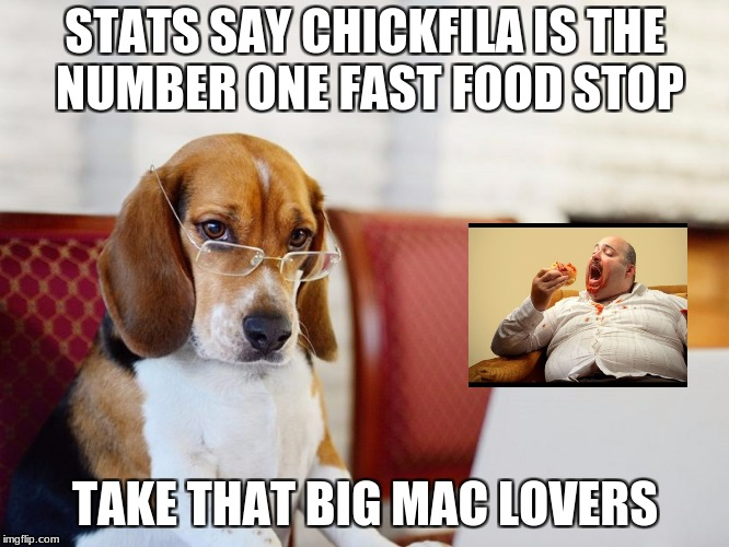 Smart beagle | STATS SAY CHICKFILA IS THE NUMBER ONE FAST FOOD STOP TAKE THAT BIG MAC LOVERS | image tagged in smart beagle | made w/ Imgflip meme maker