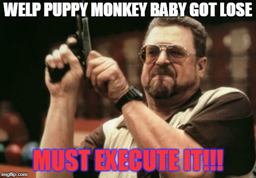Am I The Only One Around Here Meme | WELP PUPPY MONKEY BABY GOT LOSE MUST EXECUTE IT!!! | image tagged in memes,am i the only one around here | made w/ Imgflip meme maker