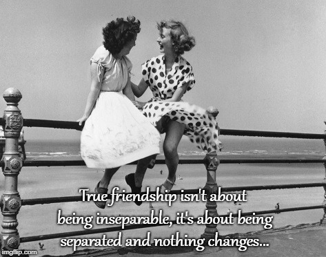 True friendship... | True friendship isn't about being inseparable, it's about being separated and nothing changes... | image tagged in separated,nothing,changes | made w/ Imgflip meme maker