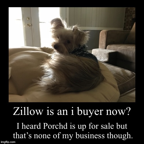 Zillow is an i buyer now? | I heard Porchd is up for sale but that's none of my business though. | image tagged in funny,demotivationals | made w/ Imgflip demotivational maker