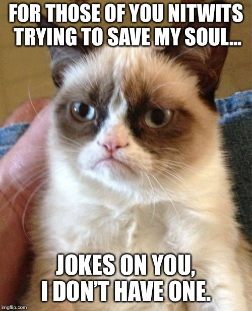 Grumpy Cat Meme | FOR THOSE OF YOU NITWITS TRYING TO SAVE MY SOUL... JOKES ON YOU, I DON'T HAVE ONE. | image tagged in memes,grumpy cat | made w/ Imgflip meme maker